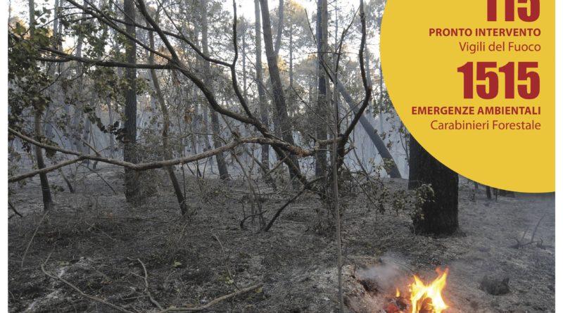 Attivazione della fase di attenzione per incendi boschivi